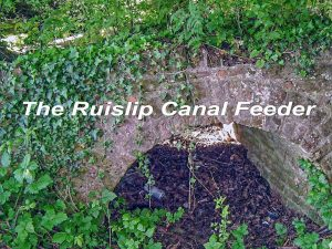 The Grand Junction Canal Feeder from Ruislip #8